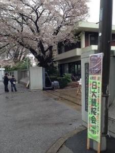観桜会 1